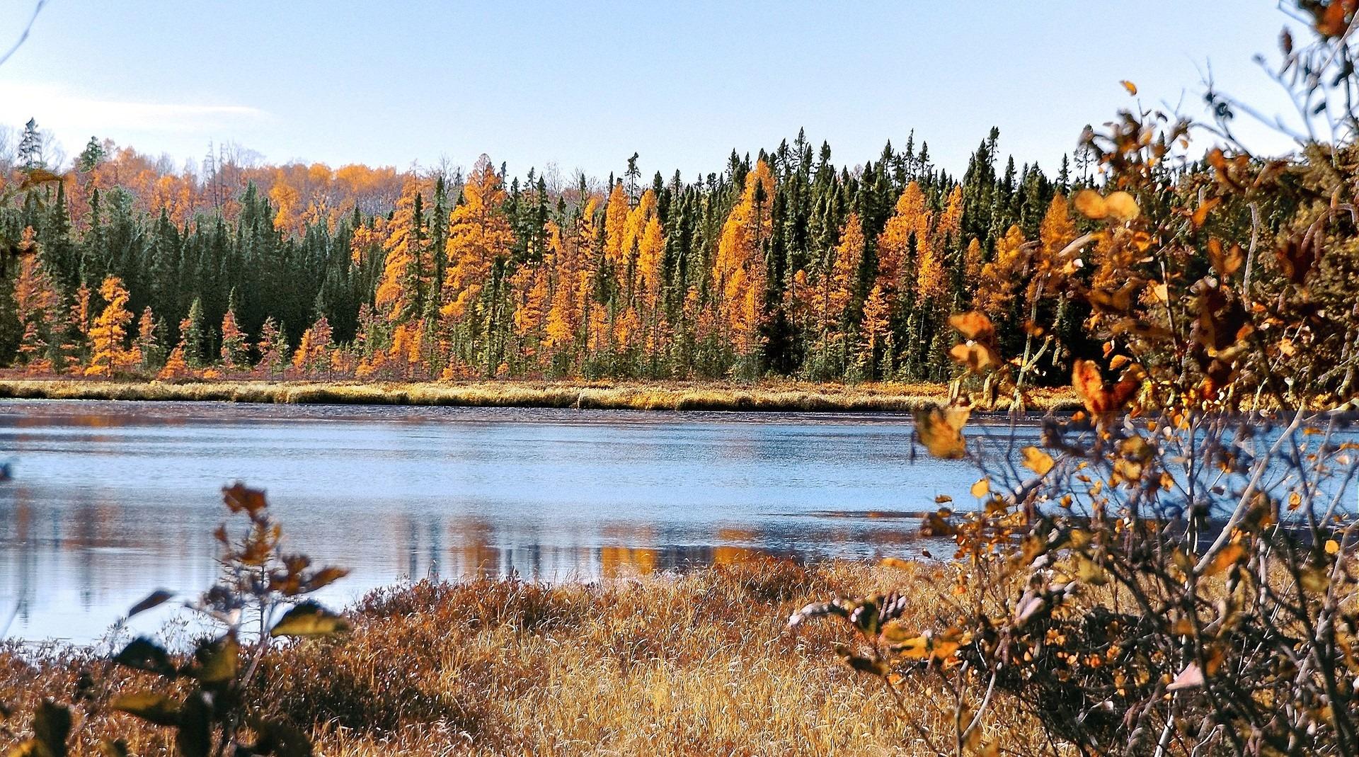 Autumn in Apple Valley, Minnesota - GoodwillCarDonation.org