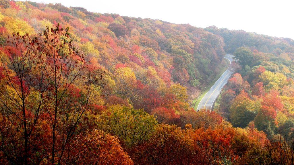 Autumn in Greensboro, North Carolina | Goodwill Car Donations