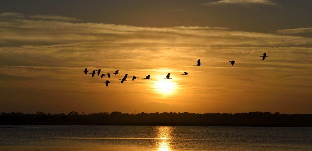 Sunset View in Miramar Beach, Florida | Goodwill Car Donations