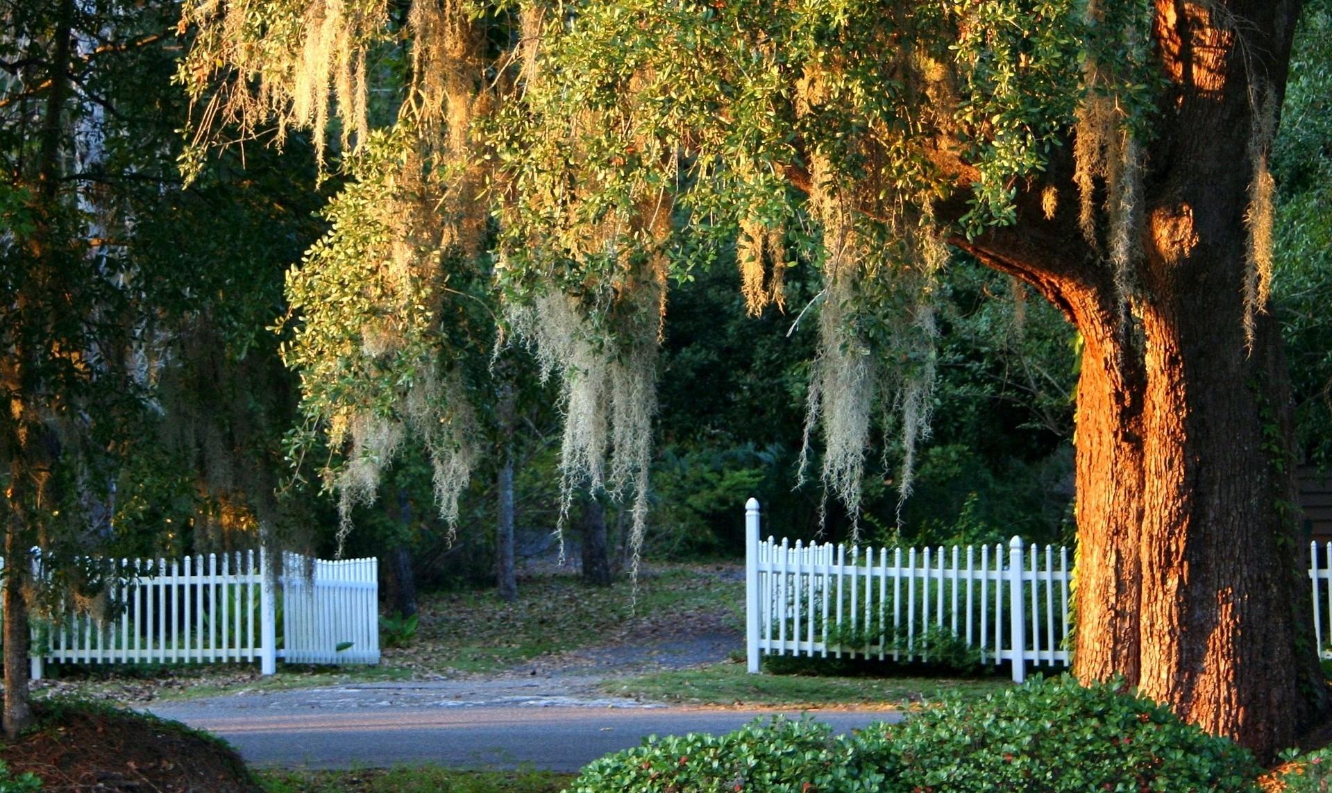 Nature in Easley, South Carolina - GoodwillCarDonation.org