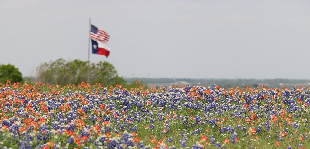 Nature in Spring, Texas | Goodwill Car Donations