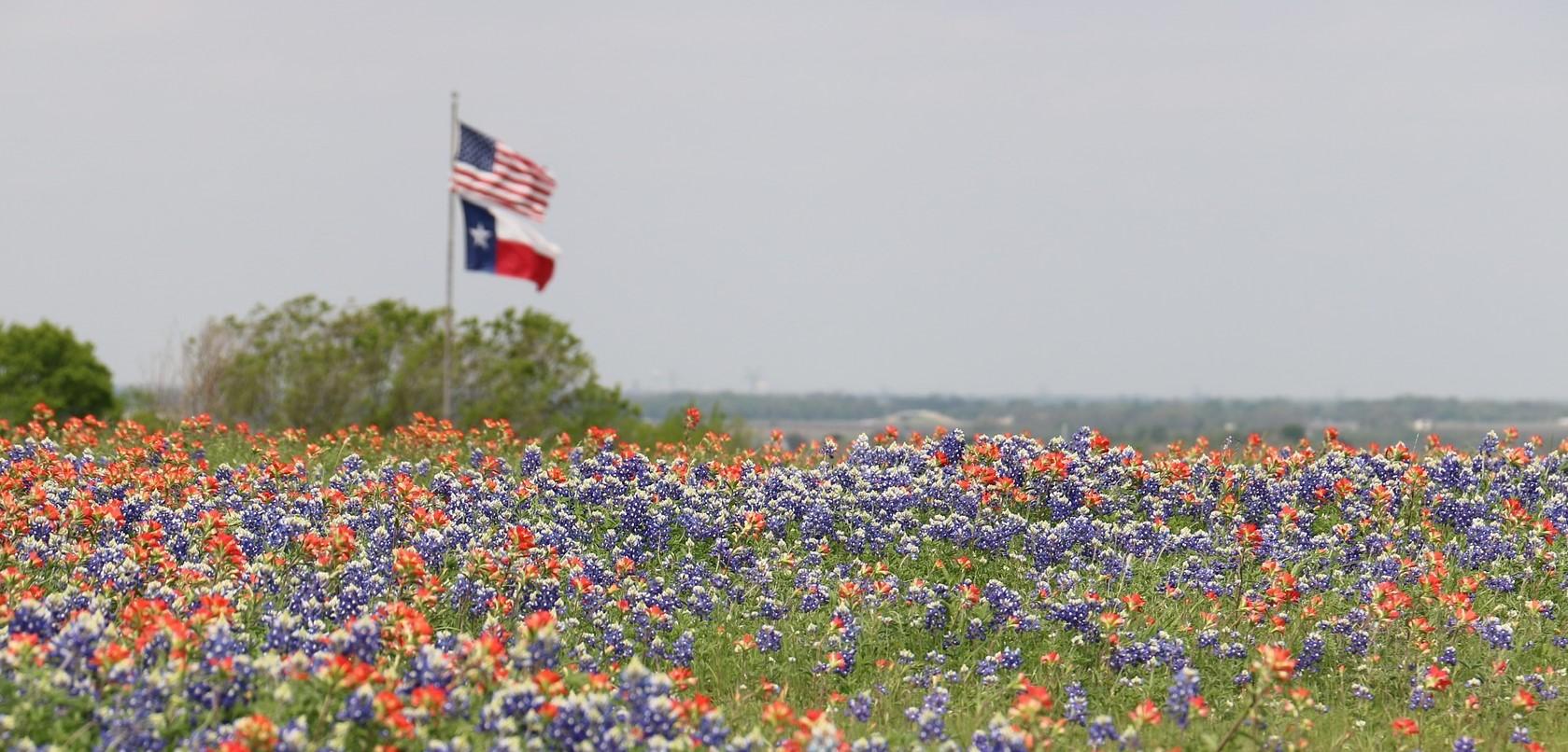 Spring, Texas Car Donations | Goodwill Car Donations