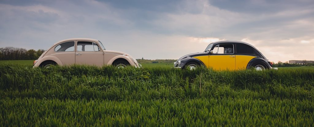 Oldtimer Beetles in Woodland Park, Colorado | Goodwill Car Donations