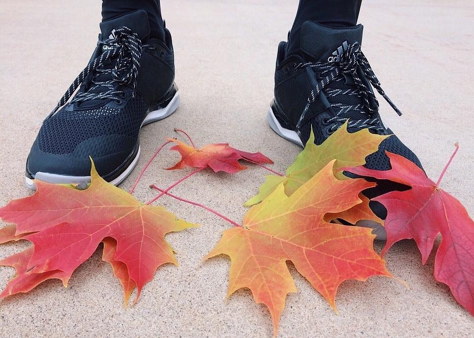 Fall Season Fitness   Goodwill Car Donations