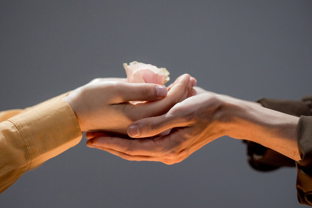 Hands Holding a Flower | Goodwill Car Donations